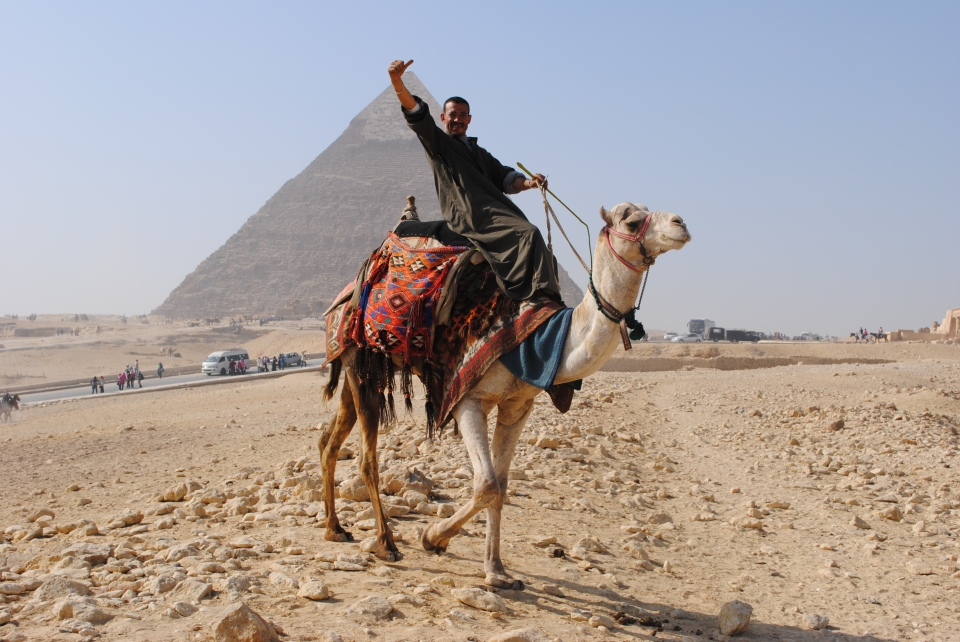 Camel rides at the pyramids of Giza